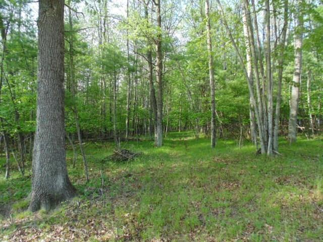 Woodhaven Drive, Wallace, MI 49837 (#50186083) :: Dallaire Realty