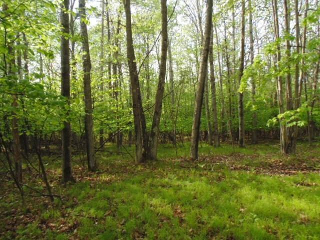 Woodhaven Drive, Wallace, MI 49837 (#50186128) :: Dallaire Realty