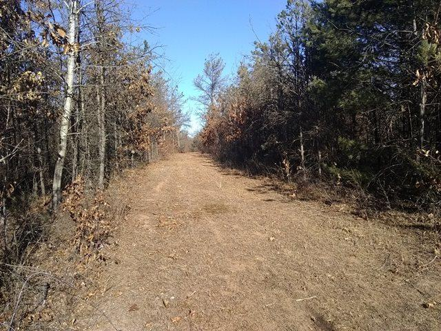 Hwy 73, Wautoma, WI 54982 (#50194383) :: Dallaire Realty