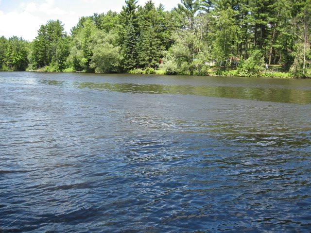 N6866 S Forest Haven Road, Shawano, WI 54166 (#50195123) :: Dallaire Realty
