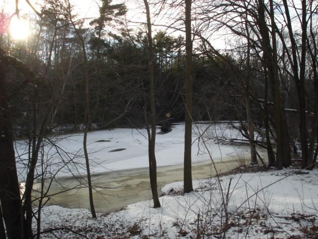 Red River Shoreline Acres, Shawano, WI 54166 (#50196300) :: Dallaire Realty
