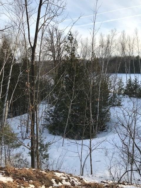 W Highland Drive, Oconto Falls, WI 54154 (#50198394) :: Todd Wiese Homeselling System, Inc.
