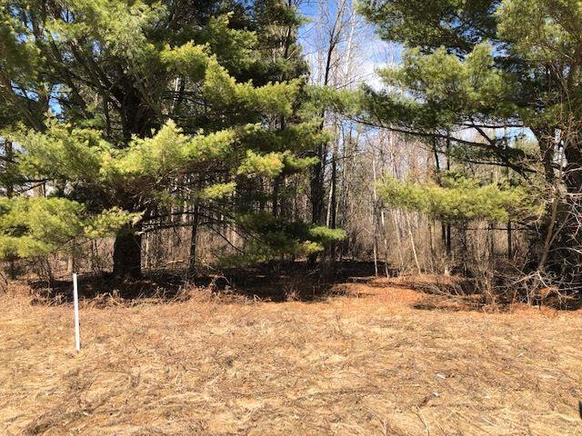 Chicken Shack Road, Oconto, WI 54153 (#50200917) :: Todd Wiese Homeselling System, Inc.