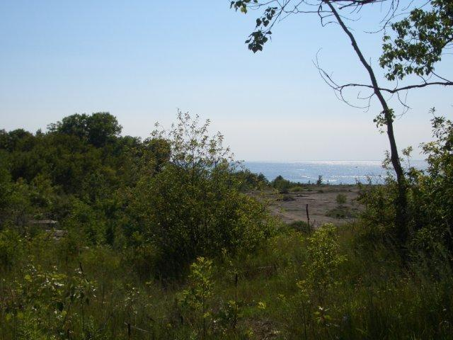 Bay Shore Heights Drive, Sturgeon Bay, WI 54235 (#50201457) :: Todd Wiese Homeselling System, Inc.