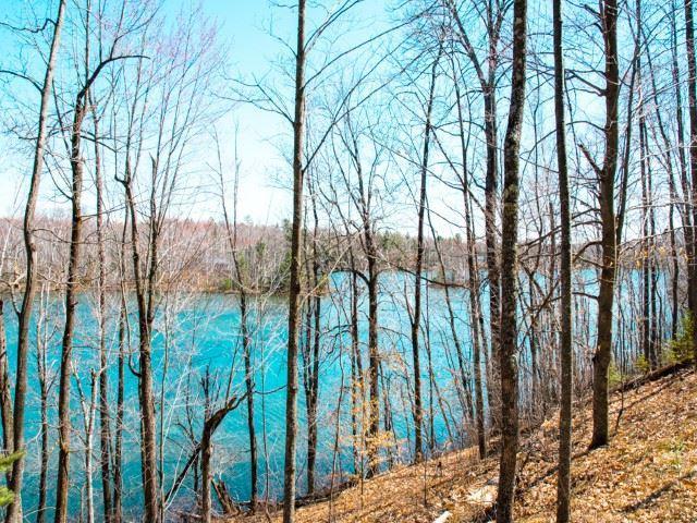 Winslow Lake Lane, Mountain, WI 54149 (#50201546) :: Dallaire Realty