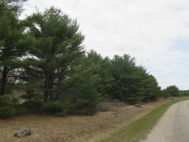 N4401 13TH Lane, Wautoma, WI 54982 (#50201880) :: Dallaire Realty