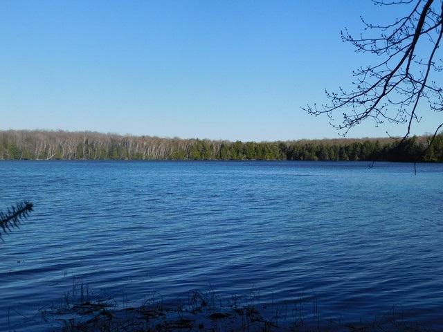 Forest Lane, Long Lake, WI 54542 (#50201956) :: Symes Realty, LLC