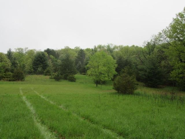 Hwy F, Wautoma, WI 54982 (#50203585) :: Dallaire Realty