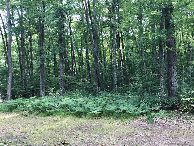 Plains Road, Porterfield, WI 54159 (#50203712) :: Dallaire Realty