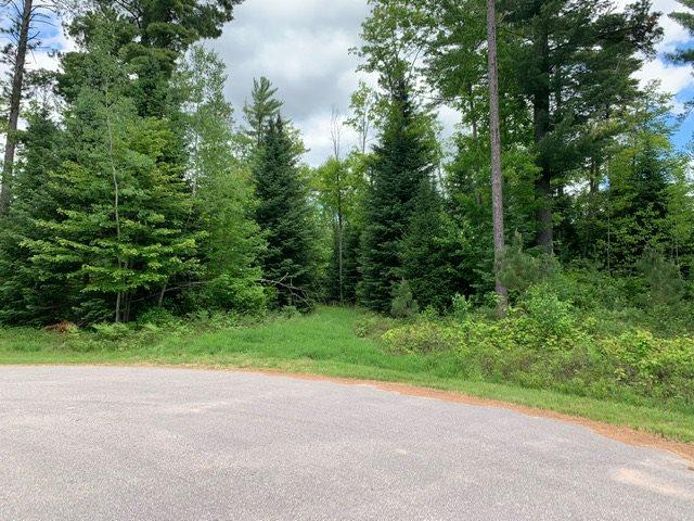 Wood Dale Trail, Eagle River, WI 54521 (#50205352) :: Todd Wiese Homeselling System, Inc.
