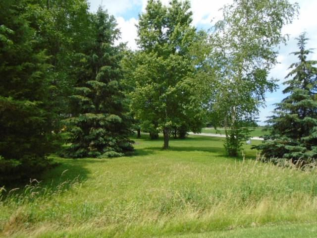 4762 Braemar Circle, New Franken, WI 54229 (#50206336) :: Todd Wiese Homeselling System, Inc.
