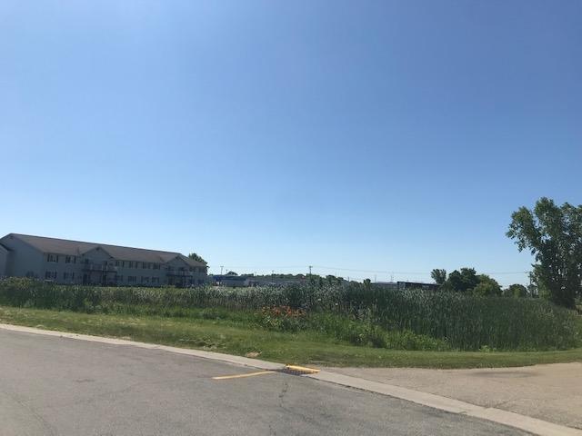 Huckleberry Avenue, Omro, WI 54963 (#50207540) :: Dallaire Realty