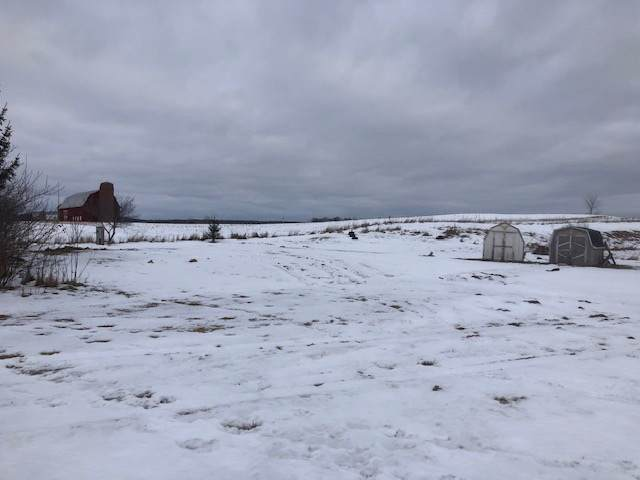 9836 Hwy B, Coleman, WI 54112 (#50215570) :: Todd Wiese Homeselling System, Inc.