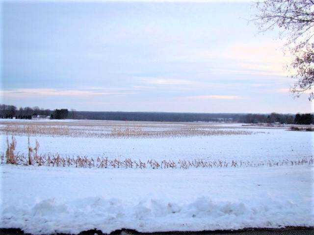 Lucy Lane, Hortonville, WI 54944 (#50216065) :: Todd Wiese Homeselling System, Inc.