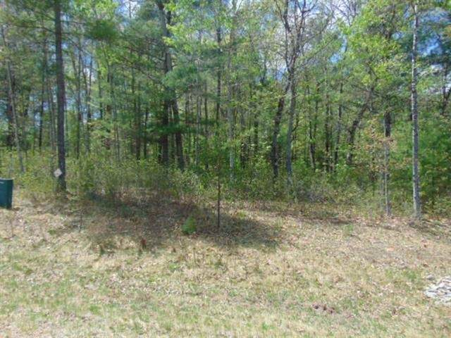 Deepwoods Trail, Crivitz, WI 54114 (#50220084) :: Dallaire Realty