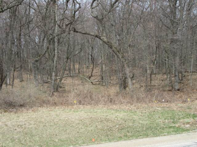 Royal Oaks Drive, Wautoma, WI 54982 (#50220973) :: Dallaire Realty