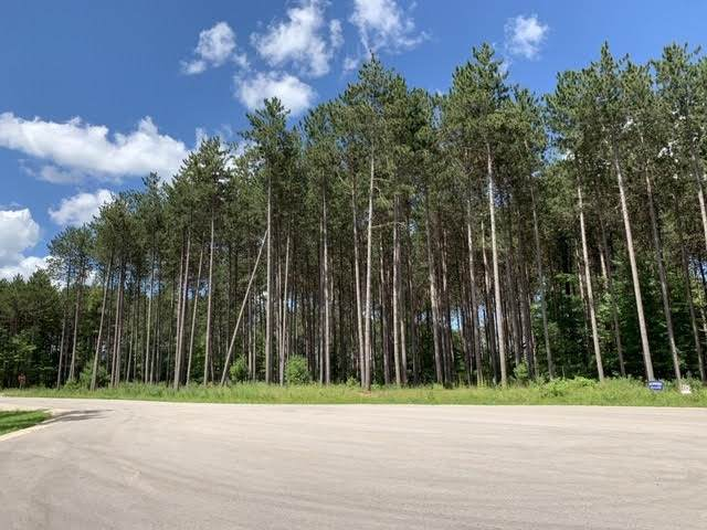 Lot 37 Norway Pine Court, Little Suamico, WI 54171 (#50226620) :: Symes Realty, LLC