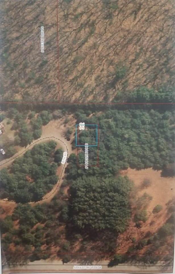 20TH Road, Neshkoro, WI 54960 (#50226840) :: Ben Bartolazzi Real Estate Inc