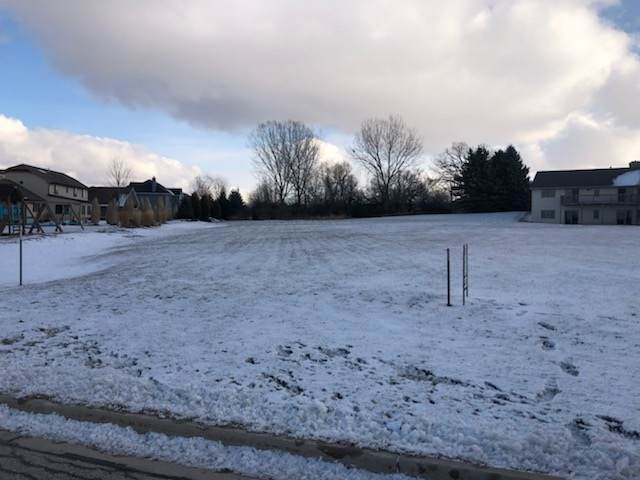 Chase Avenue, De Pere, WI 54115 (#50233587) :: Todd Wiese Homeselling System, Inc.