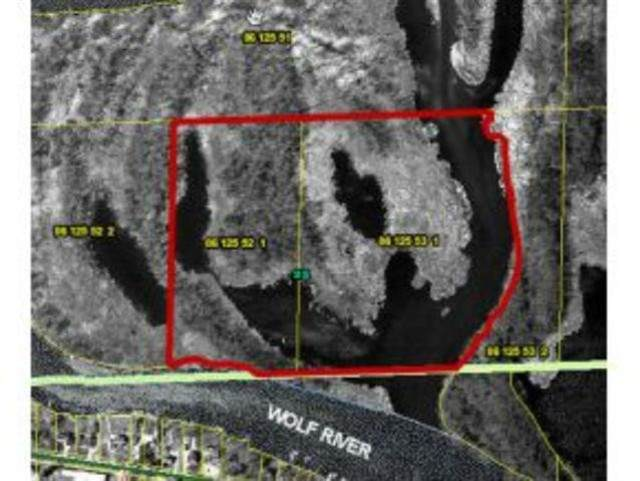Wolf River Drive, Fremont, WI 54940 (#50234476) :: Ben Bartolazzi Real Estate Inc
