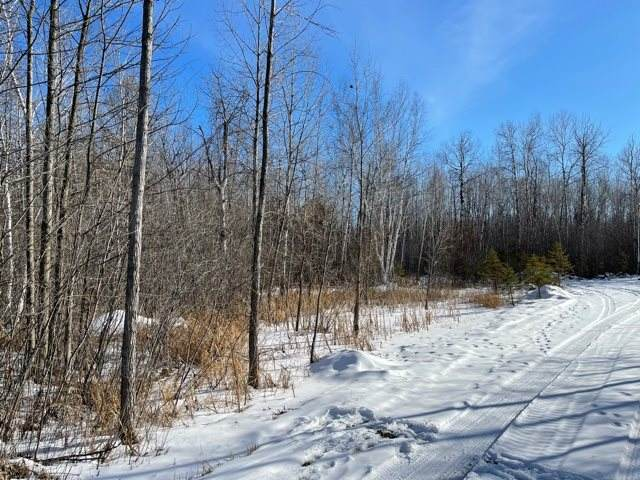 Red Cedar Road, Oconto, WI 54153 (#50235205) :: Symes Realty, LLC