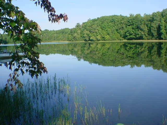 N Kelly Lake Road, Suring, WI 54174 (#50236534) :: Carolyn Stark Real Estate Team