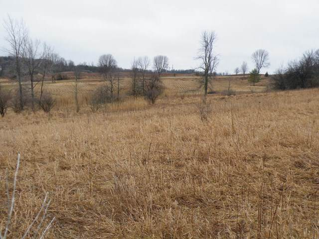 River Road, Kewaunee, WI 54216 (#50236645) :: Town & Country Real Estate