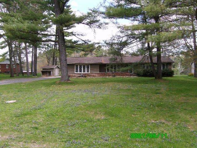 N6180 Wolf River Road, Shawano, WI 54166 (#50240248) :: Todd Wiese Homeselling System, Inc.