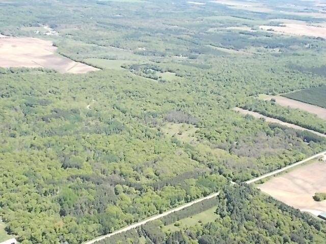 15TH Road, Wild Rose, WI 54984 (#50241785) :: Symes Realty, LLC