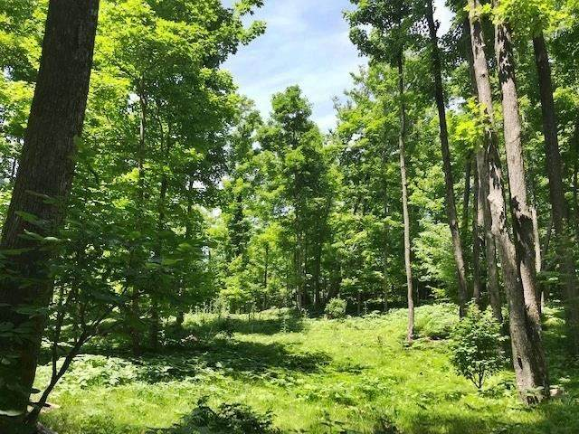 Oneonta Drive, Goodman, WI 54125 (#50243215) :: Town & Country Real Estate