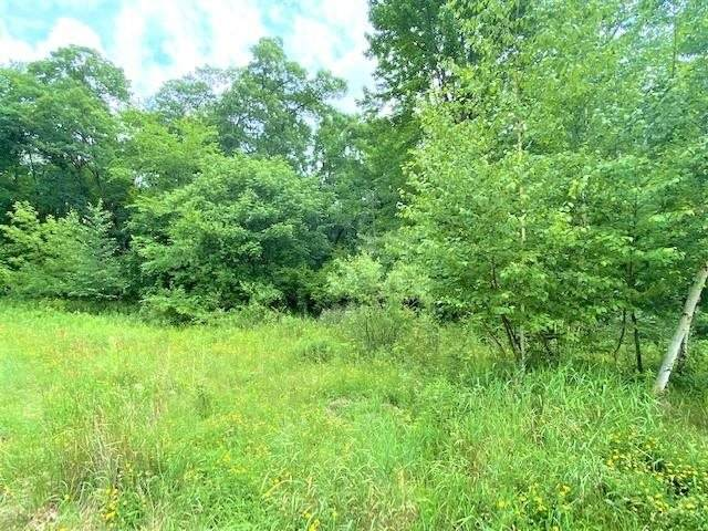 996 Thomas Trail, Waupaca, WI 54981 (#50243599) :: Carolyn Stark Real Estate Team