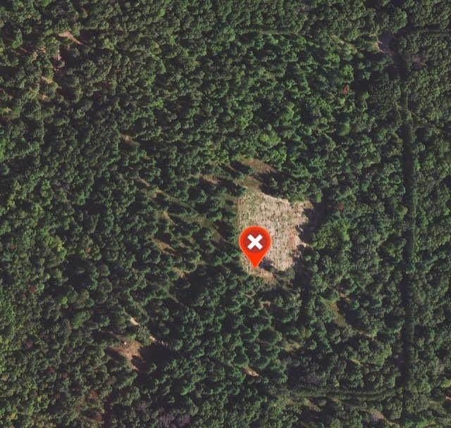 Caldron Falls Road, Crivitz, WI 54114 (#50247987) :: Symes Realty, LLC