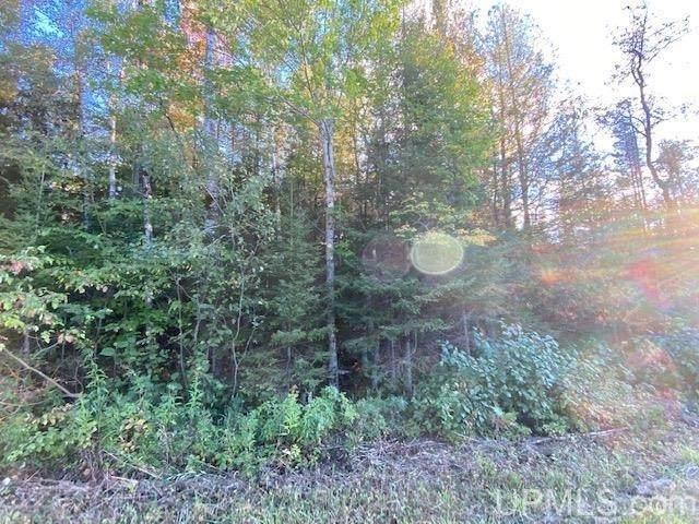 Chapman Road, Niagara, WI 54151 (#50248481) :: Todd Wiese Homeselling System, Inc.