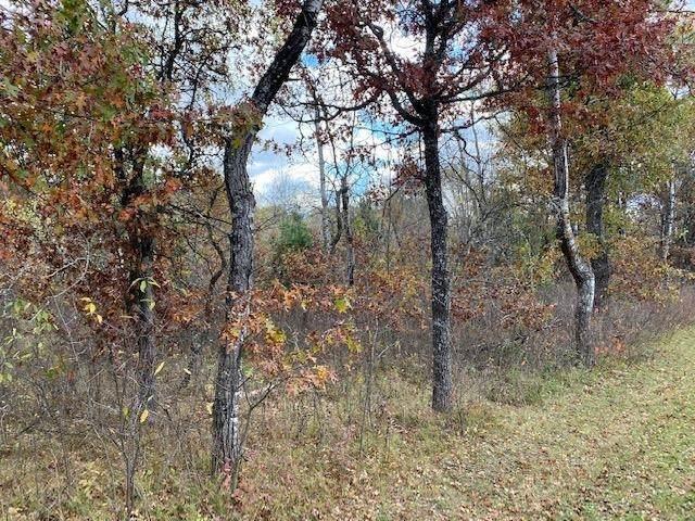 Johnson Falls Road, Crivitz, WI 54114 (#50249806) :: Ben Bartolazzi Real Estate Inc