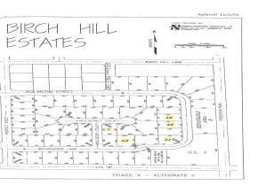 Ridlington Street, Shawano, WI 54166 (#10405868) :: Todd Wiese Homeselling System, Inc.