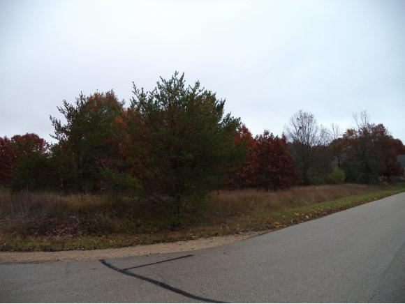 Old Mill Run #12, Waupaca, WI 54981 (#50115845) :: Todd Wiese Homeselling System, Inc.