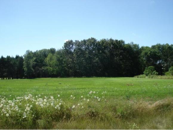 Lakeview Way #4, Bonduel, WI 54107 (#50116473) :: Symes Realty, LLC