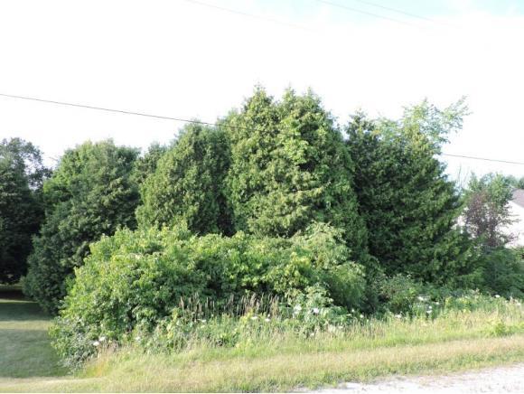 Rockville Road B, Kiel, WI 53042 (#50147089) :: Symes Realty, LLC