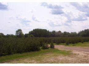 Lot 1 Wandering Springs Court, Mountain, WI 54149 (#50196962) :: Symes Realty, LLC