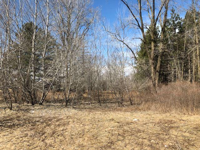 Chicken Shack Road, Oconto, WI 54153 (#50201019) :: Todd Wiese Homeselling System, Inc.