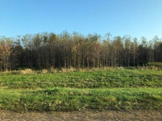 3598 Huebschner Road, Abrams, WI 54101 (#50211637) :: Ben Bartolazzi Real Estate Inc