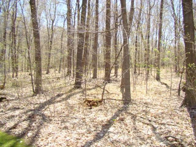 E9461 Landscape Lane - Photo 1