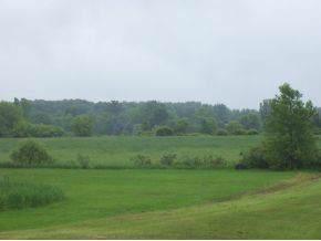 113 Green Tree Road - Photo 1