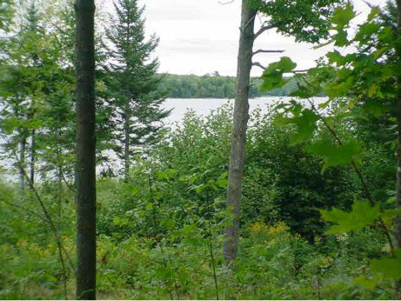 West Bay Court #4, Pearson, WI 54462 (#50082946) :: Symes Realty, LLC