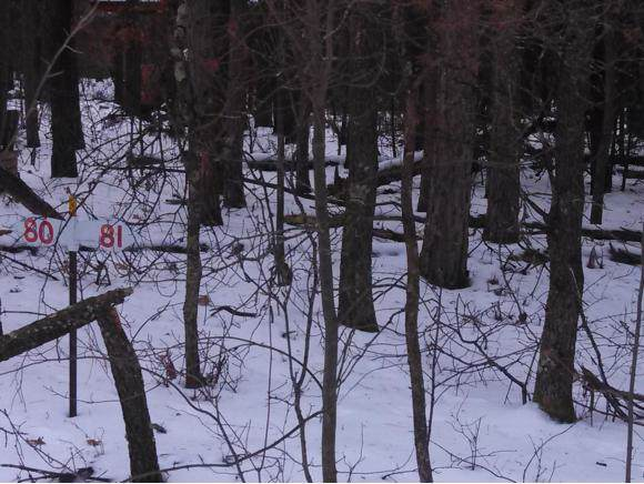 Lot 81 Pioneer Drive #81, Shawano, WI 54166 (#50138801) :: Dallaire Realty