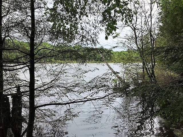 S Lake Lane, White Lake, WI 54491 (#50185211) :: Dallaire Realty