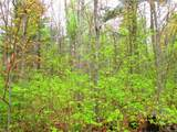 0 Mosquito Brook Road - Photo 14