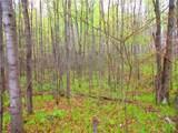 0 Mosquito Brook Road - Photo 8