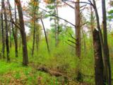 0 Mosquito Brook Road - Photo 31