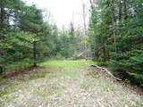 Lot 0 Chippewa Trail - Photo 9
